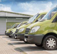 green-vans